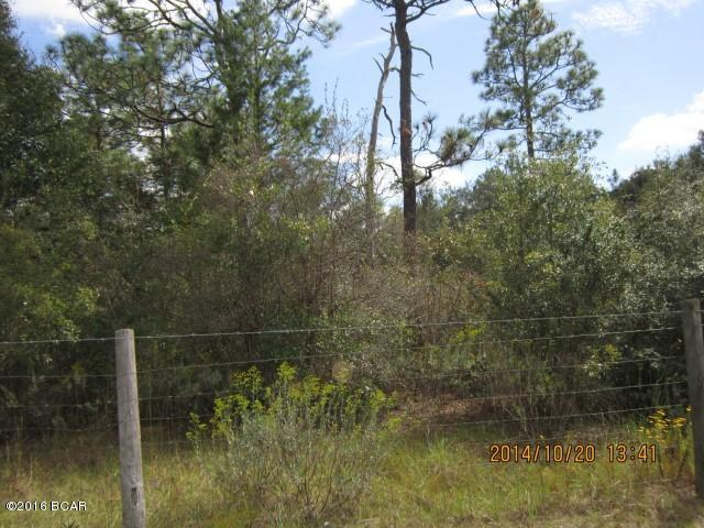 2499 Windbrook Street, Chipley, FL 32428 (MLS #676645) :: ResortQuest Real Estate