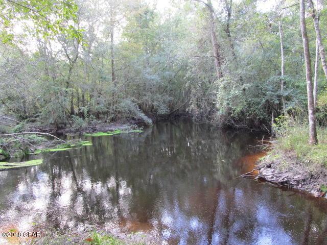 XXX Earp Road, Hosford, FL 32334 (MLS #676724) :: Keller Williams Realty Emerald Coast