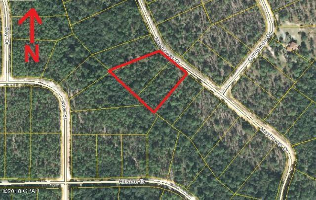 000 Mayflower Drive, Marianna, FL 32448 (MLS #676801) :: Counts Real Estate Group