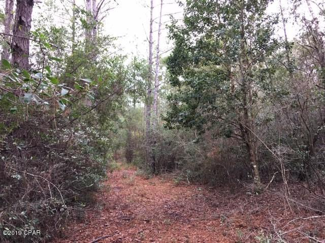85 Acres County Hwy 183 South, Defuniak Springs, FL 32433 (MLS #678983) :: ResortQuest Real Estate