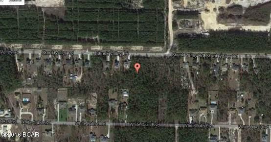 432 Skunk Valley Road, Southport, FL 32409 (MLS #679206) :: Luxury Properties Real Estate