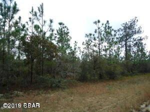 Lot 12 Adirondack, Chipley, FL 32428 (MLS #680479) :: Luxury Properties Real Estate