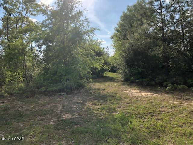 3200 Elkcam Boulevard, Chipley, FL 32428 (MLS #682606) :: Counts Real Estate Group
