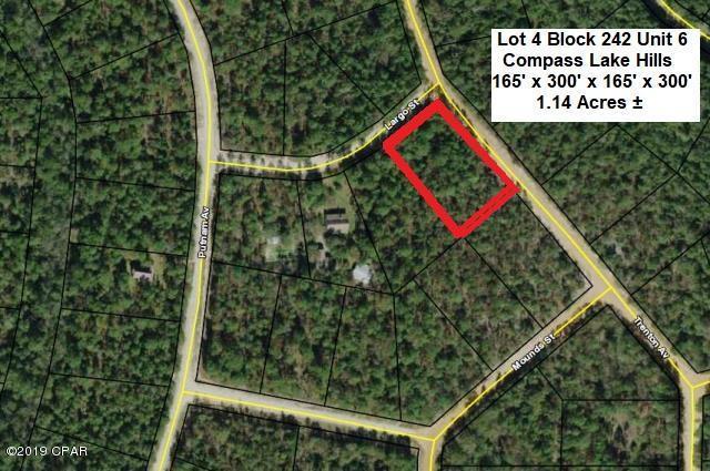 00 Trenton Avenue, Alford, FL 32420 (MLS #682767) :: CENTURY 21 Coast Properties
