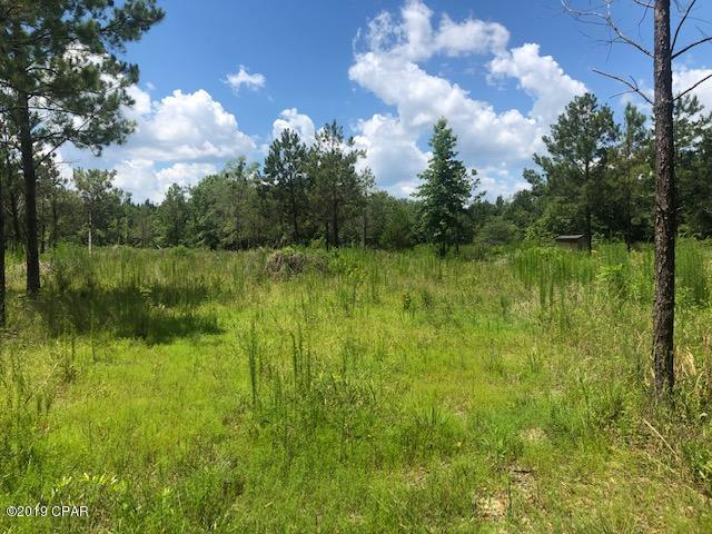 0000 Bonifay-Gritney Road - Photo 1