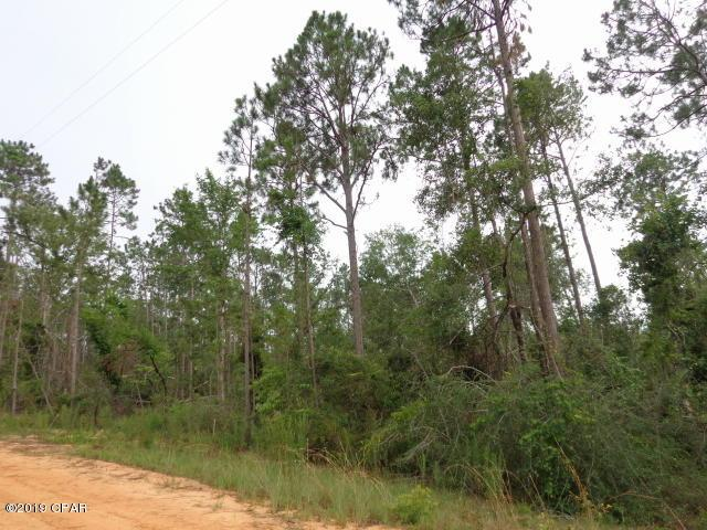 0 Chequamegon Avenue Lots 5&6, Alford, FL 32420 (MLS #685829) :: Counts Real Estate on 30A