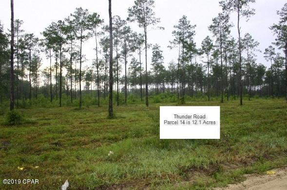 4360 Thunder Road, Sneads, FL 32460 (MLS #685993) :: ResortQuest Real Estate