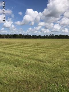 000 Syfrett Road, Chipley, FL 32428 (MLS #686231) :: ResortQuest Real Estate