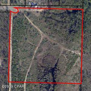 000 Raccoon Road, Southport, FL 32409 (MLS #691235) :: Counts Real Estate on 30A