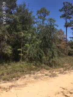 0000 Dunford Circle, Chipley, FL 32428 (MLS #691279) :: Counts Real Estate Group
