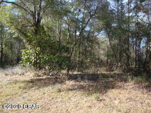Lot 17 Bonita, Chipley, FL 32428 (MLS #692625) :: Counts Real Estate Group