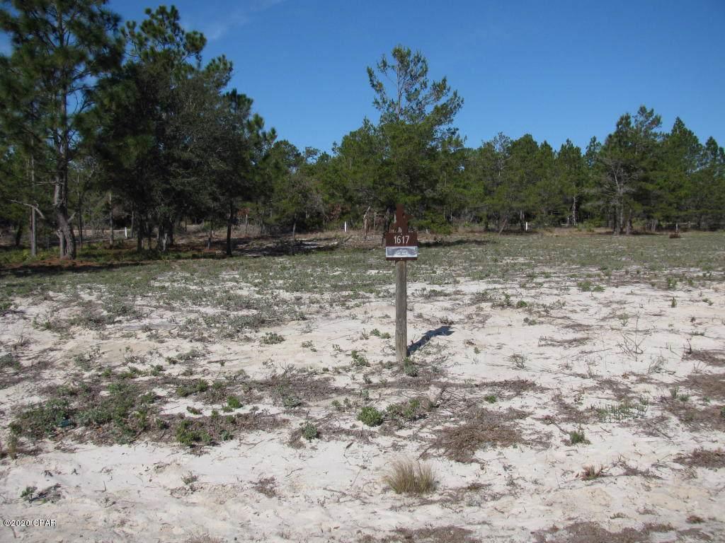 1617 Meadow Lark Way - Photo 1
