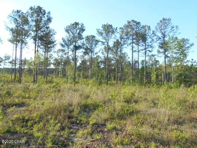 0000 River Road, Sneads, FL 32460 (MLS #696142) :: Counts Real Estate Group