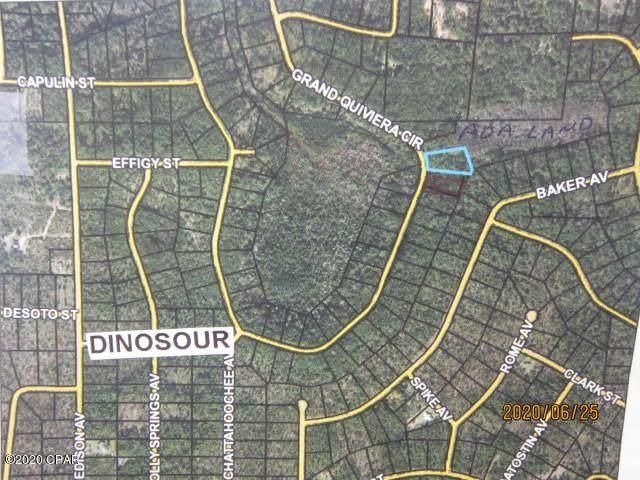 Lot 61 Grand Quiviera Circle, Alford, FL 32420 (MLS #699099) :: Keller Williams Realty Emerald Coast