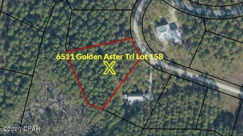 6511 Golden Aster Trail, Panama City Beach, FL 32413 (MLS #702659) :: EXIT Sands Realty