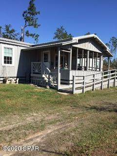 7901 Bayou George Drive, Panama City, FL 32404 (MLS #704559) :: Team Jadofsky of Keller Williams Realty Emerald Coast