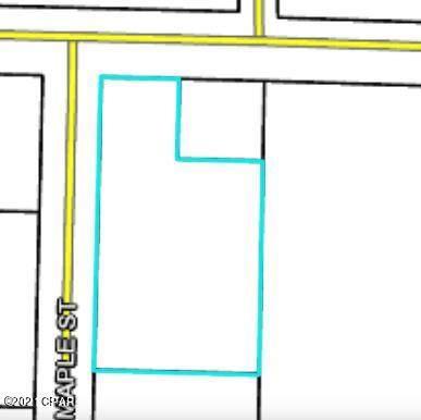 000 Maple Street, Chipley, FL 32428 (MLS #707547) :: Scenic Sotheby's International Realty