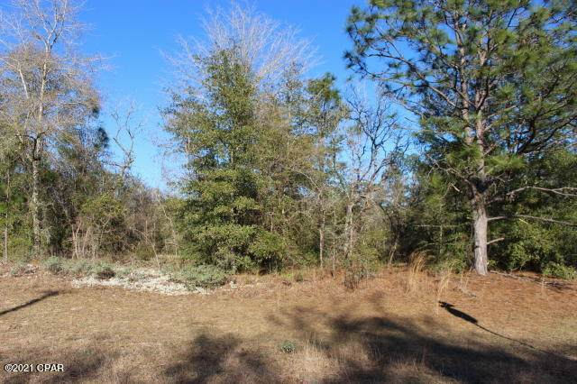 0 Clarion Street Lot 36, Chipley, FL 32428 (MLS #708738) :: The Premier Property Group