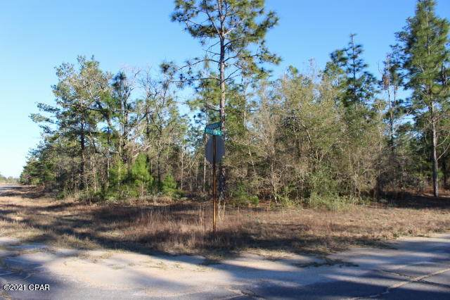 0 Rockford Drive Lot 5, Chipley, FL 32428 (MLS #708741) :: The Premier Property Group