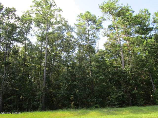XXX Co Rd 333, Bristol, FL 32321 (MLS #710053) :: Counts Real Estate Group, Inc.