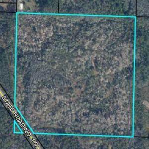 N/A State Rd 177, Bonifay, FL 32425 (MLS #711296) :: Corcoran Reverie