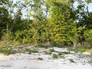 72 Noble Circle, Alford, FL 32420 (MLS #712165) :: Vacasa Real Estate