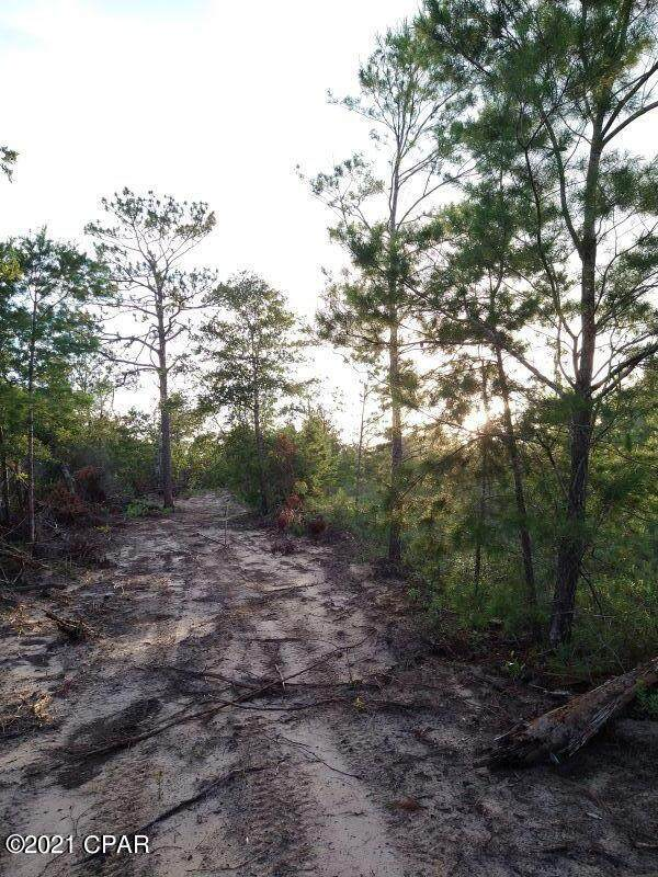 00 NW Walter Potts Road Parcel 3, Altha, FL 32421 (MLS #714012) :: Scenic Sotheby's International Realty