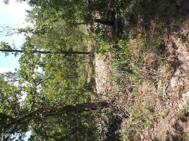 16 Ross Court, Chipley, FL 32428 (MLS #714574) :: Dalton Wade Real Estate Group