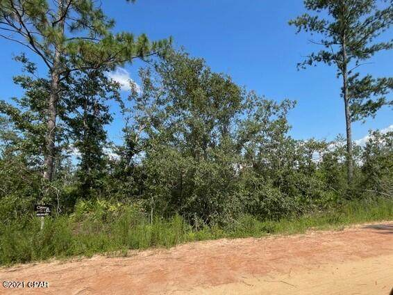00 Yvette Drive, Alford, FL 32420 (MLS #715280) :: Counts Real Estate on 30A