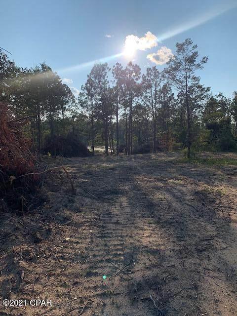 587 Mcquikin Lane, Alford, FL 32420 (MLS #715343) :: Berkshire Hathaway HomeServices Beach Properties of Florida