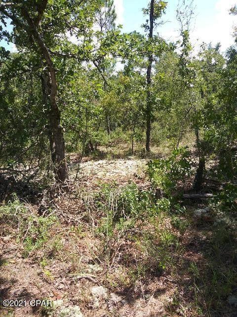 00 Greenbrier Drive Lot 25, Chipley, FL 32428 (MLS #716962) :: The Premier Property Group