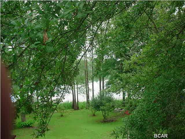 428 Lakeview Drive, Wewahitchka, FL 32465 (MLS #420237) :: ResortQuest Real Estate