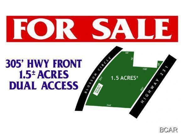 1119-W Highway 231, Alford, FL 32420 (MLS #502769) :: Keller Williams Success Realty