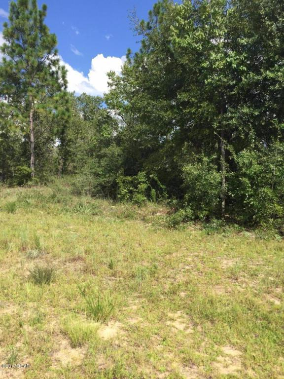 LOT 12 Amherst Drive, Chipley, FL 32428 (MLS #672670) :: CENTURY 21 Coast Properties
