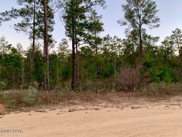 0 Hicks Lake Court Lot 14, Vernon, FL 32462 (MLS #703804) :: Team Jadofsky of Keller Williams Realty Emerald Coast