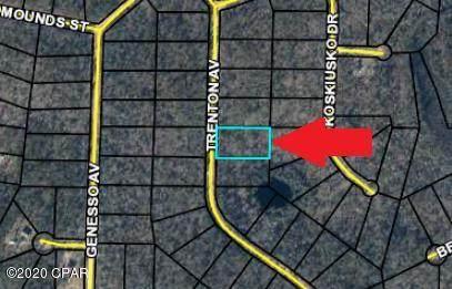 0 Trenton Avenue, Alford, FL 32420 (MLS #704963) :: Counts Real Estate Group, Inc.