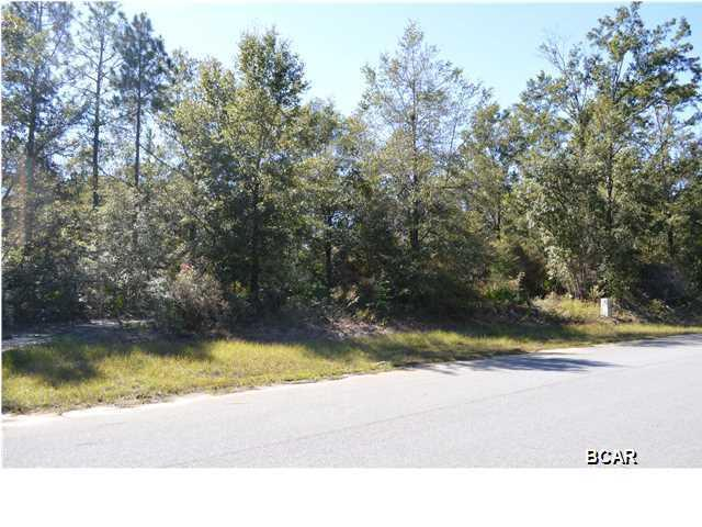 3424 Cedar Creek Chase Drive, Southport, FL 32409 (MLS #622374) :: ResortQuest Real Estate