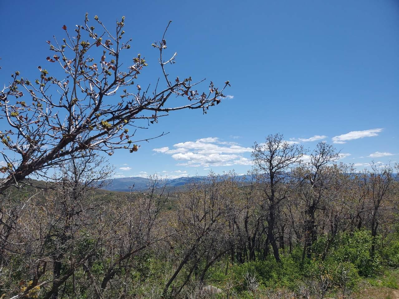 10023 Basin Canyon Road - Photo 1