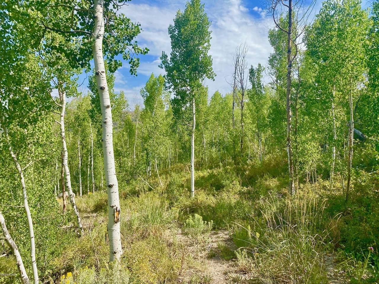 10445 Lake Pines Drive - Photo 1