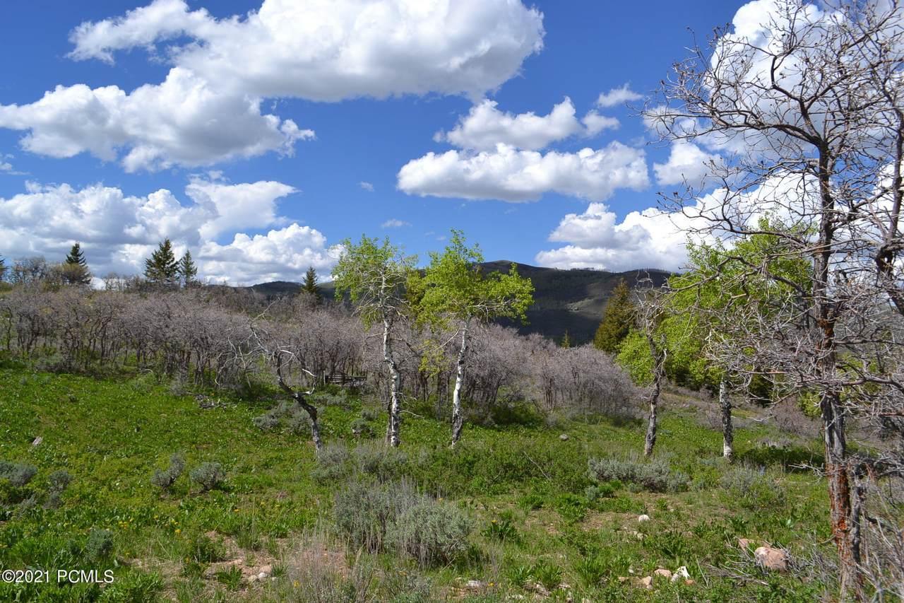 319 Porcupine Loop - Photo 1