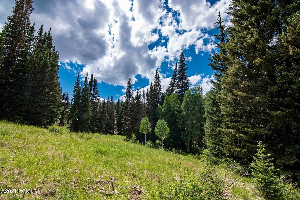329 White Pine Canyon Road - Photo 1