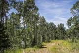 248 White Pine Canyon Road - Photo 13