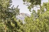 248 White Pine Canyon Road - Photo 14