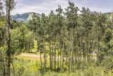 248 White Pine Canyon Road - Photo 8