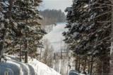 208 White Pine Canyon - Photo 8