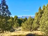 3166 Horse Mountain Cir (Lot 197) - Photo 1