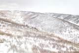 10023 Basin Canyon Road - Photo 18