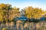 9474 Panorama Drive - Photo 10