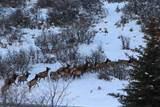 5986 Maple Ridge Trail - Photo 1