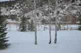 3530 Beaver Creek Road - Photo 22